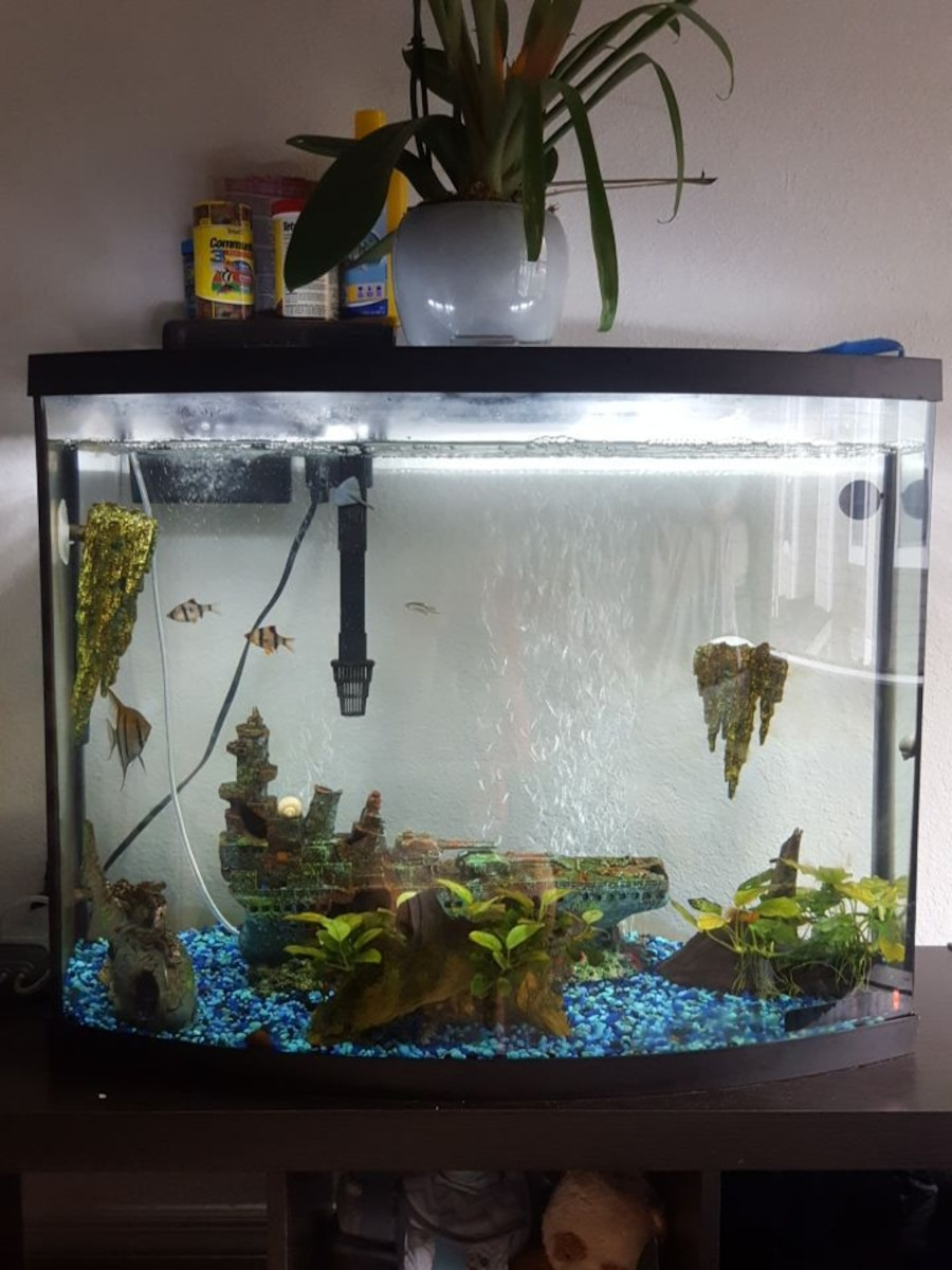 Used 35 gallon fish tank 4 months old brand new in savannah for National geographic fish tank filter