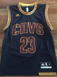 Swingman nba jersey