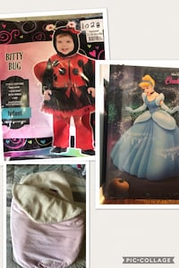 Selling a lady bug costume size 12-18 months $10.  A JJ Cole car seat cover $10. Cinderella picture $15. All items are in excellent condition . Brampton, L6X 2L2