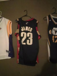 Cleveland Cavaliers LeBron James 23 basketball jersey Bountiful, 84010