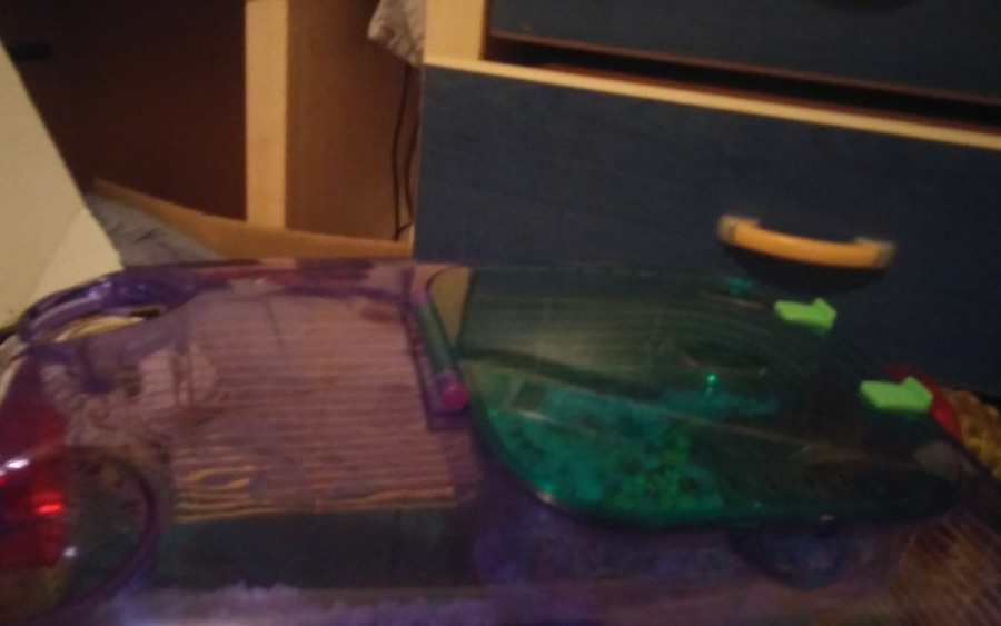 Multicolored Mice/Hamster/Small Pet Cage - Brampton