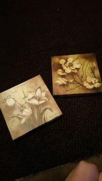 two white and brown flower paintings Washington, 63090
