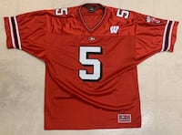 Wisconsin football jersey (large)