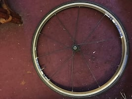 Bicycle rims, front and back