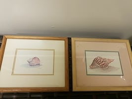 Sea Shell picture frames