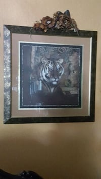 white, brown, and black tiger print with black fra Tulare, 93274