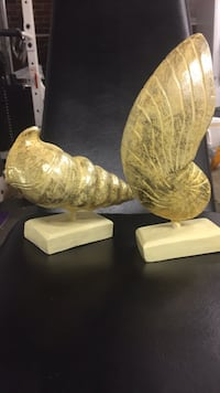 Gold painted shells Irmo