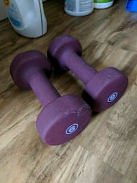 purple and black fixed weight dumbbells Carlstadt, 07072