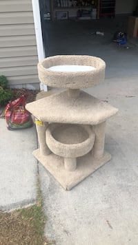 brown and white cat tree Richlands, 28574