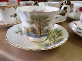Hard to Find Royal Albert Tea Cup