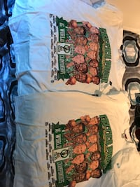 2 unused Celtics 50 year anniversary T-shirt's size xl Billerica, 01821