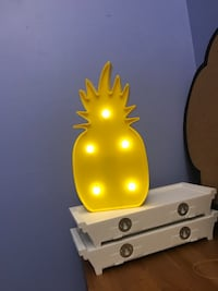 Light up pineapple Toronto