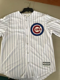 Anthony Rizzo World Series champs jersey  East Stroudsburg, 18302