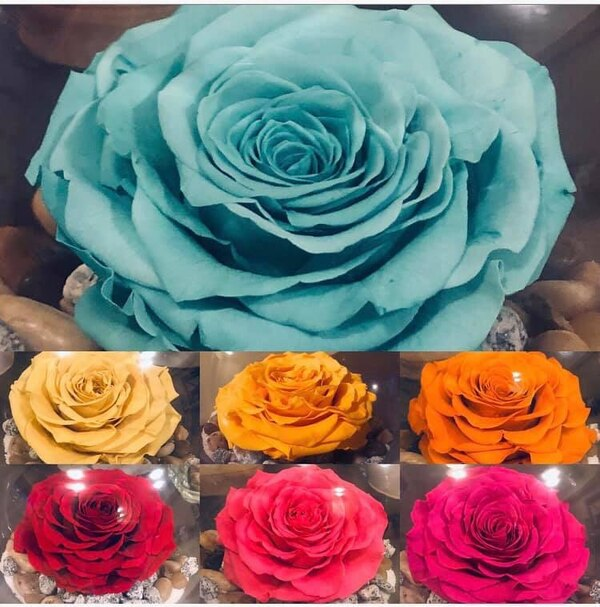 Assorted color artificial flowers in box