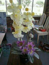 white-and-yellow moth orchids and pink waterlilies centerpiece Melbourne, 32935