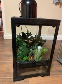 Cage for lizards