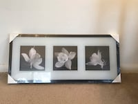 Three white flowers painting with black wooden frame Mc Lean, 22101