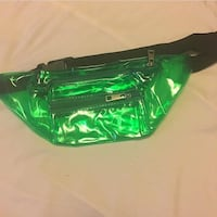 Transparent Fanny pack green Washington