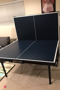 Ping pong table plus paddles, balls, and net