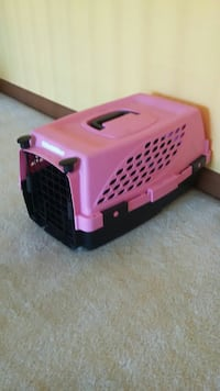 Cat or Small Dog Carrier 40 km