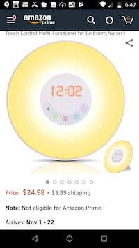Wake-Up Light Alarm Clock Burke, 22015