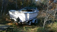 Boat with double axle trailer needs tires boat in need of repair  Big Rapids, 49307