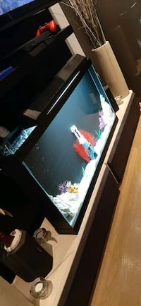Custom size wall fish tank