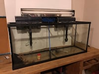55 gallon tank with filters  Madison, 35758