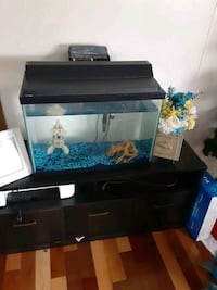 Fish tanks 2 for 50 with accessories Martinsburg, 25405
