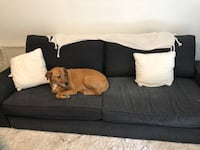 IKEA sofa with pullout futon mattress Owings Mills, 21117