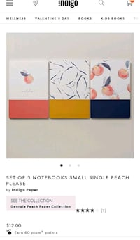 NEW Peach Notebook Set (3)
