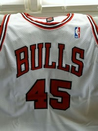 Nike Authentic MJ Bulls #45 rare Parkville