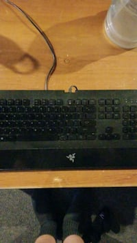 Razer Deathstalker Keyboard