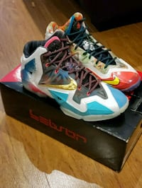 Lebron 11 size 8. What the lebron Pickering, L1V 5P8
