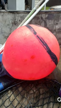 Anchor ball Kelso, 98626