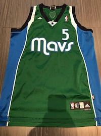 green and blue Nike Lebron James 23 jersey Toronto, M6A 1C8