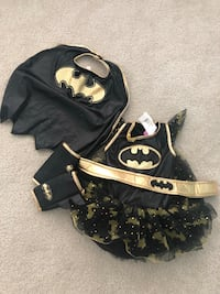 Batgirl costume size small (4-6 year old)