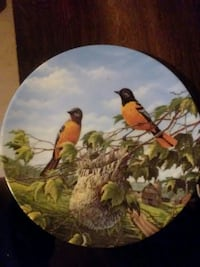 Baltimore Oriole painting decorative plate East Saint Louis, 62207