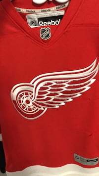 Redwings jersey Cambridge, N1S 1N6