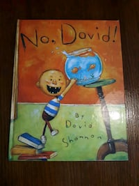 No, David! (David Books [Shannon])