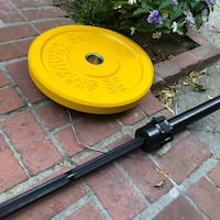 25lb rubber plate  West Hollywood, 90046