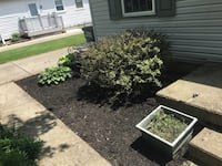 Mcclure lawn care Kettering