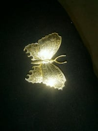 Butterfly pinit Evansville