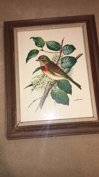 Green and brown bird painting