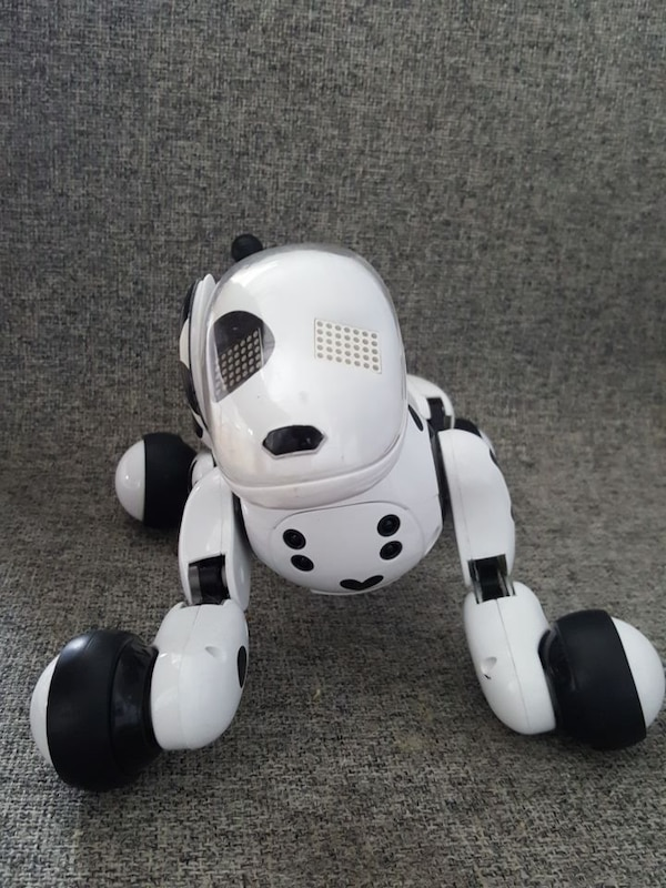 white and black Zoomer dog robot toy