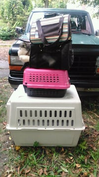 Various Pet carriers Akron, 44307