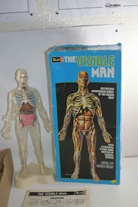Vintage Revell (The Visible Man) Male Anatomy Mode Oceanside, 92057