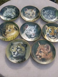 Big Cat Collection Plates