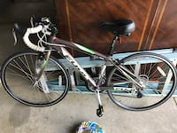 Purple green and white fuji road bicycle Dover, 19904