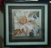 Wall Art- White Flower Copperas Cove, 76522
